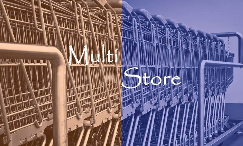 What is Magento Multistore? Using Multistore to Expand Business