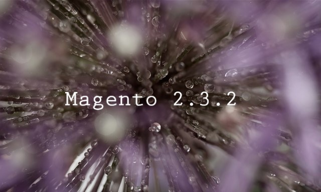 Sneak Preview of Magento 2.3.2